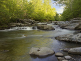 Middle Fork of the Little Pigeon River, Great Smoky Mountains National Park, Tennessee, Usa Photographic Print by Adam Jones