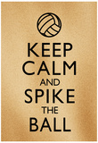 Keep Calm and Spike the Ball Beach Volleyball Poster Láminas