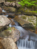 Jordan Stream in Acadia National Park, Maine, Usa Photographic Print by Chuck Haney