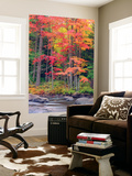 Autumn in the Adirondack Mountains, New York, Usa Wall Mural by Christopher Talbot Frank