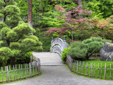 Nishinomiya Japanese Garden, Manito Park, Spokane, Washington, Usa Photographic Print by Jamie &amp; Judy Wild