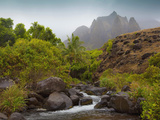 Kalalau Valley Stream, Napali Coast, Kauai, Hawaii, Usa Photographic Print by Douglas Peebles