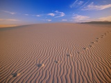 The Wind Obliterating the Human Footprints on the Sand Dunes Photographic Print by John Eastcott & Yva Momatiuk