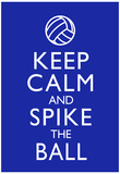Keep Calm and Spike the Ball Volleyball Posters