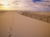 Human Footprints on a Ridge in the Sand Dunes Photographic Print by John Eastcott & Yva Momatiuk