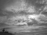 Sun Behind Heavy Clouds, Norfolk Pines and Pacific Beach at High Tide Photographic Print by John Eastcott & Yva Momatiuk