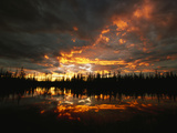 Black Spruce Trees are Reflected in a Tundra Pond at Sunset Photographic Print by John Eastcott & Yva Momatiuk