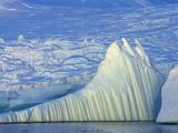 Iceberg and Massive Coastal Glacier Descending to the Sea Photographic Print by John Eastcott & Yva Momatiuk