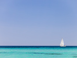 Italy, Sardinia, Olbia-Tempo, Berchidda, a Sailing Boat Out at Sea Photographic Print by Nick Ledger