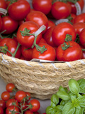 Sicily, Italy, Western Europe, Tomatoes and Basil, Staple Items in the Southern Italian Kitchen Photographic Print by Ken Scicluna