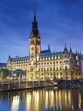 Germany, Hamburg, City Hall (Rathaus) Photographic Print by Michele Falzone