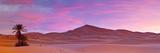 Merzouga, Sahara Desert, Morocco Fotografisk tryk af Doug Pearson