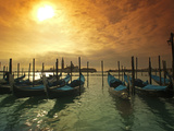 Venice, Veneto, Italy, Gondolas Tied at the Bacino Di San Marco Photographic Print by Ken Scicluna
