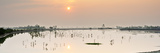 Sundarbans National Park, Tiger Reserve at Dawn. West Bengal, India Photographic Print by Mauricio Abreu