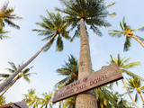 Thailand, Ko Samui, Chaweng Beach, Sign on Palm Tree Photographic Print by Shaun Egan