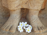 Frangipani Flowers at Feet of Statue of Parakramabahu, Southern Ruins, Polonnaruwa (UNESCO World He Photographic Print by Ian Trower