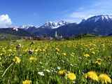 Pfronten, Allgaeu, Bavaria, Germany Photographic Print by Katja Kreder