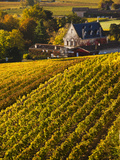 France, Aquitaine Region, Gironde Department, St-Emilion, Wine Town, Unesco-Listed Vineyards Photographic Print by Walter Bibikow