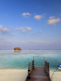 Maldives, Meemu Atoll, Medhufushi Island, Luxury Resort, Overwater Bungalows Photographic Print by Michele Falzone