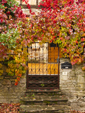 France, Midi-Pyrenees Region, Tarn Department, Cordes-Sur-Ciel, Gate with Autumn Foliage Photographic Print by Walter Bibikow