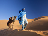 Tuareg Man Leading Camel Train, Erg Chebbi, Sahara Desert, Morocco Fotografisk tryk af Peter Adams