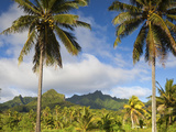 Rarotonga, Cook Islands, South Pacific Photographic Print by Doug Pearson