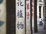 Man Riding Bicycle Along Street, Chikanzhen, Guangdong, Guangdong, China Photographic Print by Ian Trower
