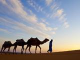 Camel Driver, Sahara Desert, Merzouga, Morocco, (MR) Photographic Print by Doug Pearson