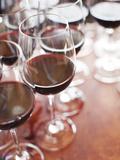 Spain, La Rioja Area, Alava Province, Elciego, Bodega Marques De Riscal Winery, Wine Tasting Photographic Print by Walter Bibikow