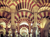 Michele Falzone - Spain, Andalucia, Cordoba, Mezquita Catedral (Mosque - Cathedral) (UNESCO Site) Fotografická reprodukce