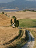 Winding Road, Val D' Orcia, Tuscany, Italy Fotografie-Druck von Peter Adams