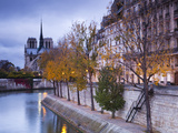 France, Paris, Cathedral Notre Dame Cathedral and Ile St-Louis, Dawn Photographic Print by Walter Bibikow