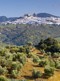 Elevated View Towards the Picture Perfect Hilltop Town of Olvera, Olvera, Cadiz Province, Andalusia Photographic Print by Doug Pearson