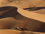 Camels and Dunes, Erg Chebbi, Sahara Desert, Morocco Photographic Print by Peter Adams