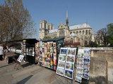 The Famous Cathedral of Notre Dame in Paris with the Bouquinistes in the Foreground, Paris Photographic Print by David Bank