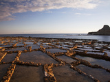 Gozo, Malta, Europe, Salt Pans in Marsalforn Photographic Print by Ken Scicluna