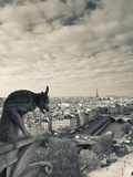 Walter Bibikow - France, Paris, View from the Cathedrale Notre Dame Cathedral with Gargoyles Fotografická reprodukce