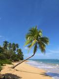 Tres Palmitas Beach, Loiza, Puerto Rico Photographic Print by Katja Kreder