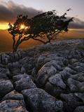 Europe, England, North Yorkshire, Ingleton, Twistleton Scars Photographic Print by Mark Sykes