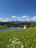 Lake Hegradtsrieder See, Allgaeu, Bavaria, Germany Photographic Print by Katja Kreder
