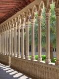 Spain, Balearic Islands, Mallorca, Palma De Mallorca, Basilica De Sant Francesc, Cloister Photographic Print by Michele Falzone