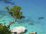Cala Goloritze, Golfo Di Orosei, Parco Nazionale Del Gennargentu E Golfo Di Goloritze, Sardinia, It Photographic Print by Katja Kreder