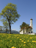 Saint Coloman Near to Fuessen, Allgaeu, Bavaria, Germany Photographic Print by Katja Kreder