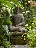 Bali, Ubud, a Statue of buddha Sits Serenely in Gardens Reprodukcja zdjęcia autor Niels Van Gijn