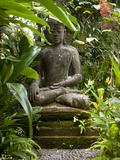 Bali, Ubud, a Statue of buddha Sits Serenely in Gardens Fotografie-Druck von Niels Van Gijn