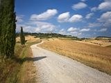 Italy, Tuscany, Siena District, Orcia Valley, Pienza Photographic Print by Francesco Iacobelli