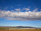 Mongolia, Bayangobi, Ger Camp Photographic Print by Jane Sweeney