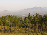 Malawi, Zomba, View over the Town of Zomba from the Lower Slopes of Zomba Plateau Where Once There  Fotografisk tryk af John Warburton-lee