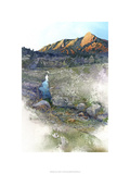 Flatirons Sunrise - Boulder, Co. Premium Giclee Print by Bruce White