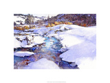 Deer Creek Bend - Colorado Premium Giclee Print by Bruce White